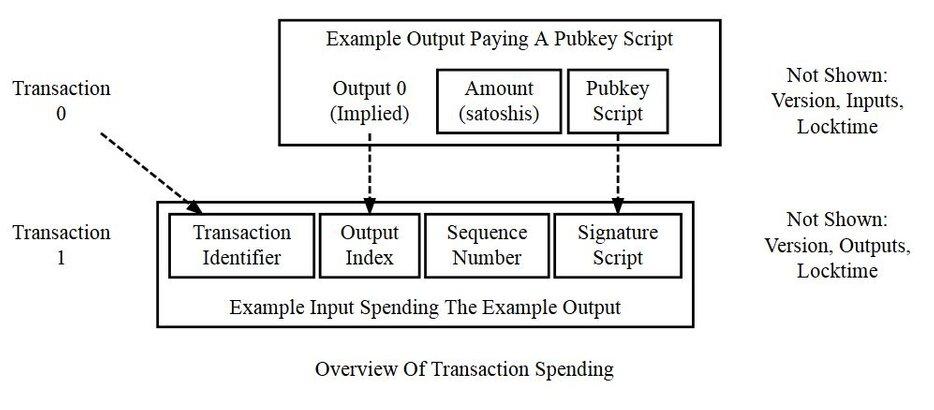dettagli della transazione bitcoin
